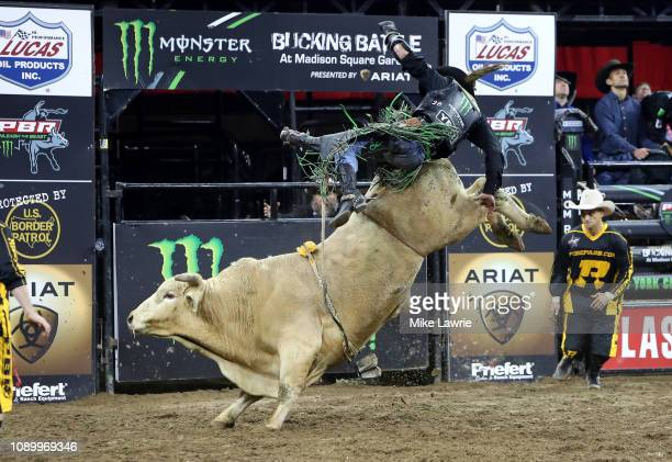B Mauney rides Sugar Boom Boom during the PBR Unleash The Beast bull riding event at Madison Square Garden on January 04 2019 in New York City