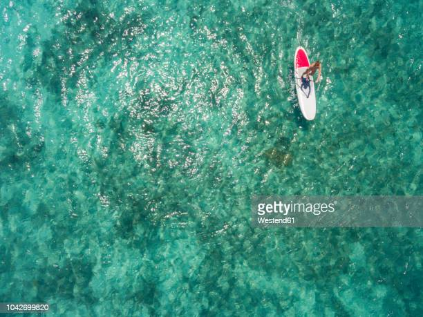 mauritius, young woman on stand up paddling board - ile maurice photos et images de collection