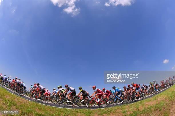 Maurits Lammertink of The Netherlands and Team Katusha-Alpecin / Mikel Nieve Ituralde of Spain and Team Mitchelton-Scott / Landscape / Peloton /...