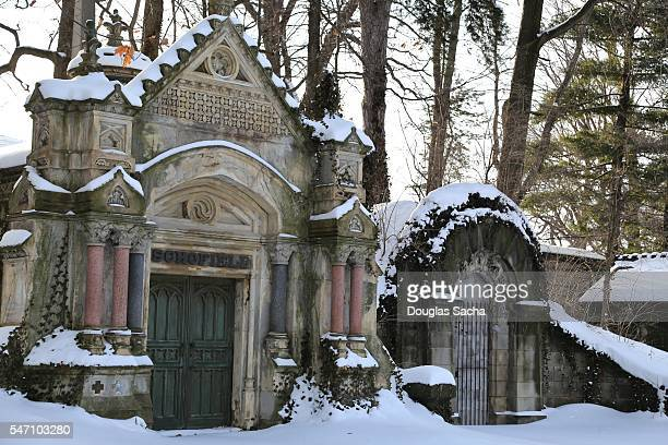 mausoleums in the snow covered hillside, lake view cemetery, cleveland, ohio, united states - crypt stock photos and pictures