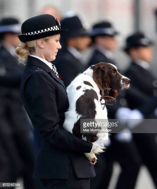 'Max' a Springer Spaniel police dog being carried by his handler PC Norgrove during the Metropolitan Police Service Passing Out Parade for new...