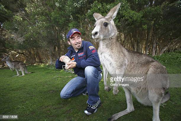 Max Biaggi of Italy and the Repsol Honda Team feeds a kangaroo during day one of the 2005 Australian MotoGP at the Phillip Island Wildlife Park...