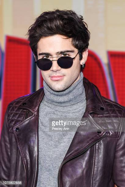Max Ehrich attends World Premiere of Sony Pictures Animation and Marvel's SpiderMan Into The SpiderVerse at Regency Village Theatre on December 01...
