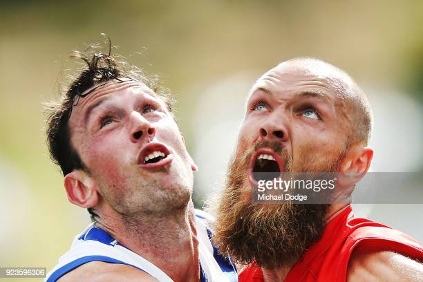 Max Gawn of the Demons and Todd Goldstein of the Kangaroos compete for the ball during the JLT Community Series AFL match between the North Melbourne...