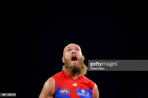 Max Gawn of the Demons competes for the ball during the round 14 AFL match between the Port Adelaide Power and the Melbourne Demons at Adelaide Oval...