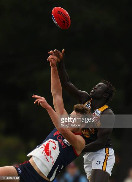 Max Gawn of the Scorpions and Majak Daw of the Tigers compete for the ball during the VFL Semi Final match between the Casey Scorpions and the...