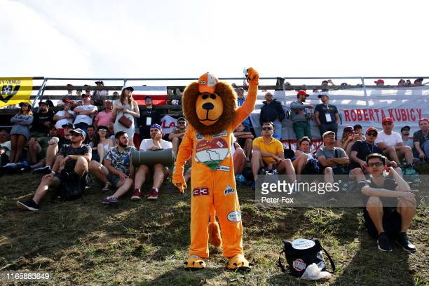 Max Verstappen of Netherlands and Red Bull Racing fan dressed as a lion shows their support during qualifying for the F1 Grand Prix of Hungary at...