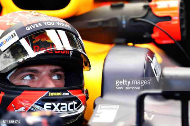 Max Verstappen of Netherlands and Red Bull Racing prepares to drive during final practice for the Formula One Grand Prix of Hungary at Hungaroring on...
