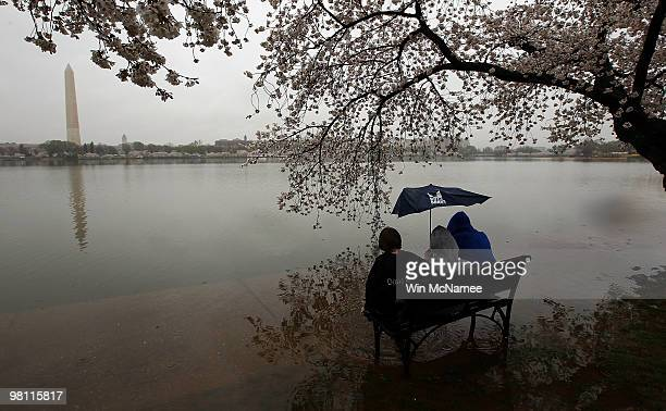 Maxewell Rees and his brothers Daniel Rees and Jackson Rees sit on a park bench partly submerged due to seasonal flooding next to the Tidal Basin as...