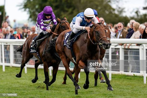 Maxime Guyon riding Plumatic win The Tattersalls Sovereign Stakes at Salisbury Racecourse on August 16 2018 in Salisbury United Kingdom