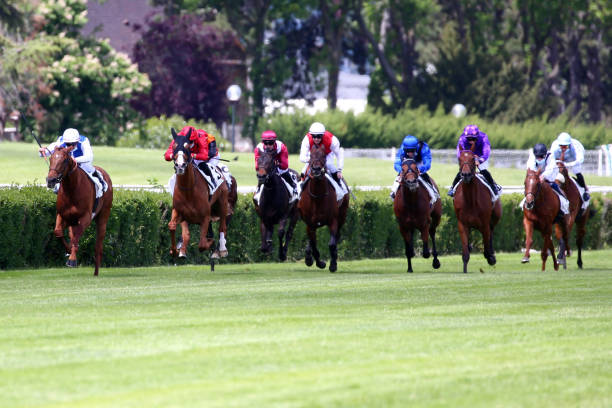 FRA: Meeting Saint Cloud - Horse Racing