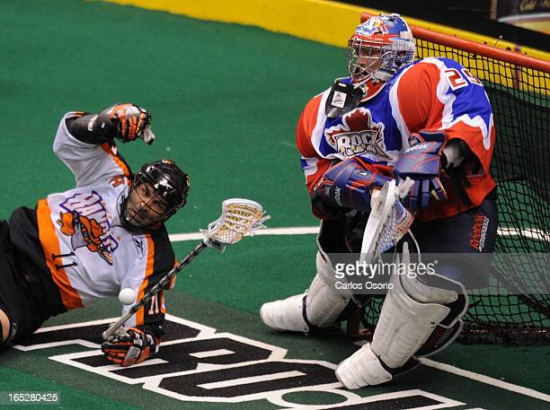 May 1 2010 John Tavares of the Buffalo Bandits tries to get a shot on Bob Watson of the Toronto Rock during their Lacrosse playoff game at the ACC...