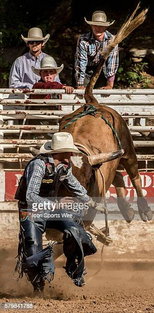 Dalton Angus McMurtrie from Inyokern California gets away from bull during bull riding event at the 58th Annual Mother Lode RoundUp in Sonora...
