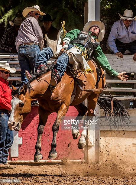 Justin Miller from Billings Montana scores 80 points int he bareback bronc riding event at the 58th Annual Mother Lode RoundUp in Sonora California...
