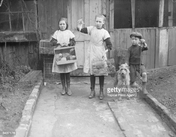 Young rat catchers arriving home after their night's work