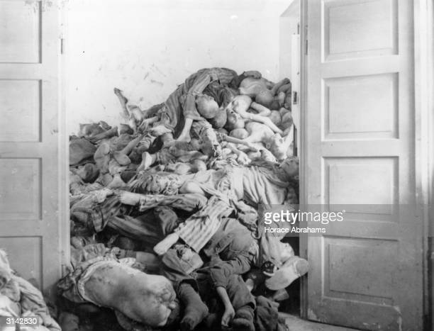 A pile of corpses found by troops of the US 7th Army at Dachau concentration camp in Germany These prisoners had been gassed and their bodies were...