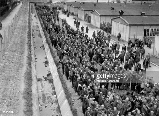 Some of the thousands of prisoners at Dachau concentration camp cheer as they see the Americans of the 7th Army arriving to liberate the camp These...