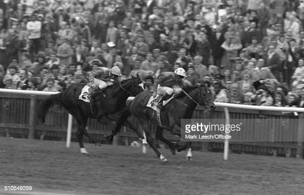 05 May 1984 Newmarket Races Jockey Pat Eddery rides El Gran Senor to victory in the 2000 Guineas race at Newmarket beating Chief Singer