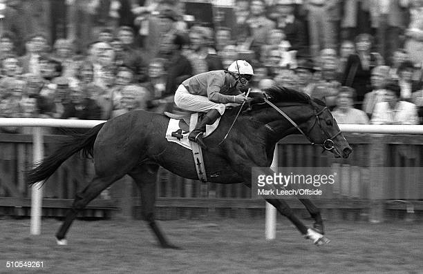 05 May 1984 Newmarket Races Jockey Pat Eddery rides El Gran Senor to victory in the 2000 Guineas race at Newmarket