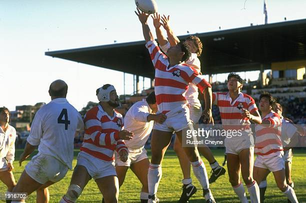 England and Japan team members reach out for the ball in a lineout during the Rugby World Cup match in Sydney Australia England won the match 607...
