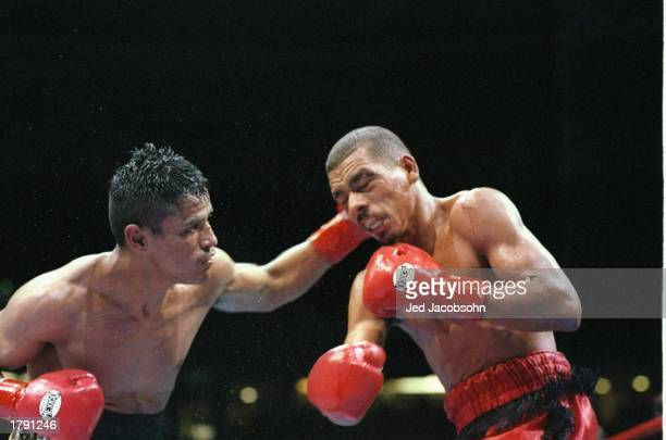 Jesse Magana and Jose Ayala in action during a bout Magana won the fight with a TKO in the 12th round Mandatory Credit Jed Jacobsohn /Allsport