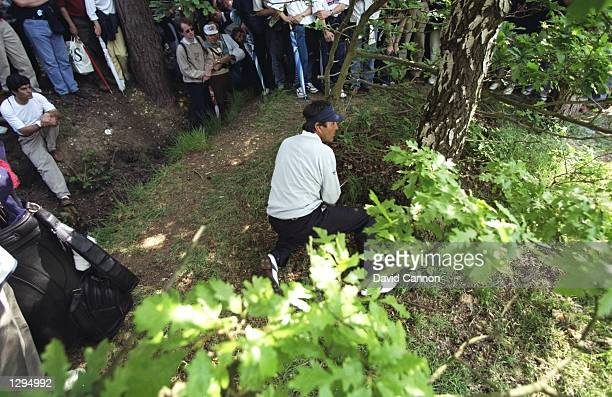 Seve Ballesteros of Spain plays out of the trees during the Volvo PGA Championships at Wentworth Golf Club in England Mandatory Credit David...