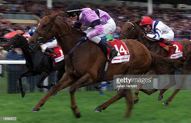 Darren Williams and Juwwi lead the field home at York to land The Guilbert UK Rated Stakes run over 6 Furlongs Mandatory Credit Julian...