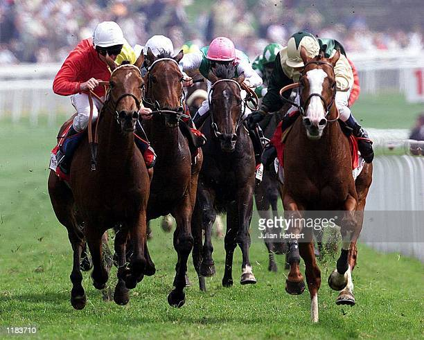 Gary Bardwell brings the white faced Bangalore home to land The Tote Chester Cup run over 2 Miles and 2 Furlongs at the Cheshire course Mandatory...