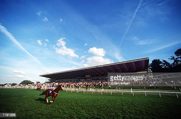 A general view of Sandown Racecourse Mandatory Credit Julian Herbert/Getty Images