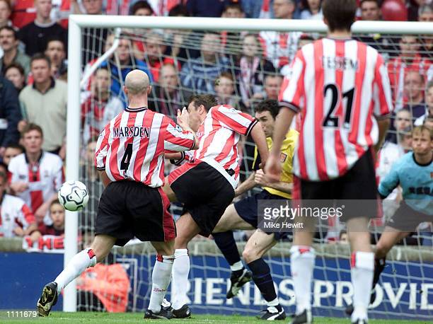 Matthew Le Tissier of Southampton scores the winning goal against Arsenal during the last ever League game at The Dell between the Southampton v...