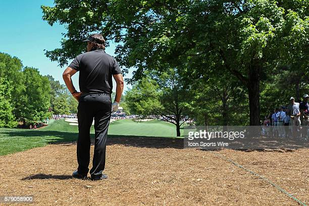 Phil Mickelson looks towards the 5th green from the extreme rough during third round action at the the Wells Fargo Championship Tournament at Quail...