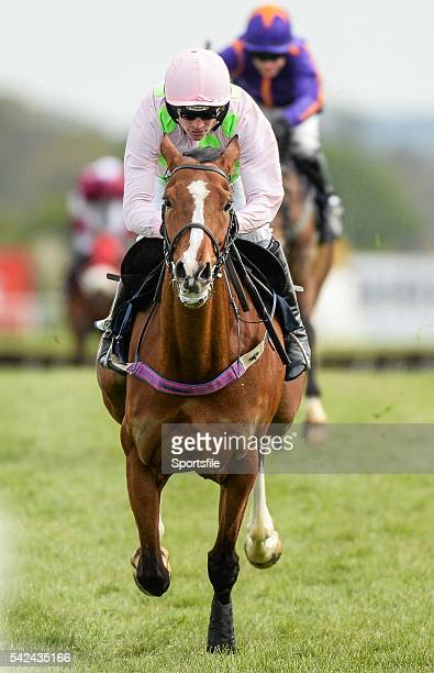 1 May 2015 Faugheen with Ruby Walsh up on their way to winning the Queally Group Celebrating 35 Years In Naas Punchestown Champion Hurdle Punchestown...