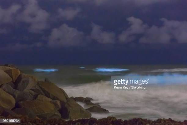 may 2018 bioluminescent red tide in san diego county - red_tide stock pictures, royalty-free photos & images