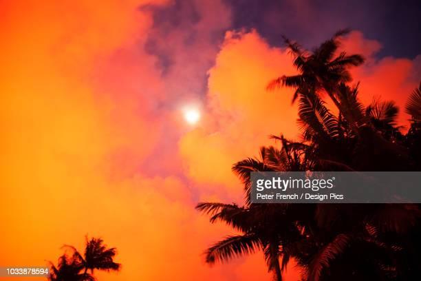 may 2018 eruption, leilani estates subdivision, east rift zone kilauea volcano, big island of hawaii - パホア ストックフォトと画像