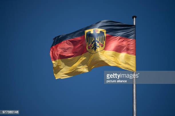 The Official Flag of the Federation waving on the rooftop of the Villa Borsig in Berlin Photo Ralf Hirschberger/dpa