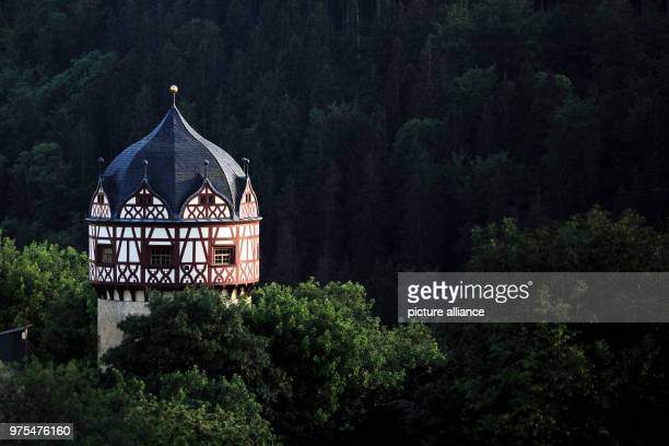 May 2018, Germany, Burgk: The watch tower of the Burgk castle standing between green trees high above the Saale valley. The castle was built in the...