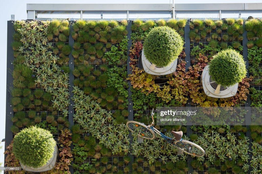 Vertical Hightech Garden At Uni Hohenheim