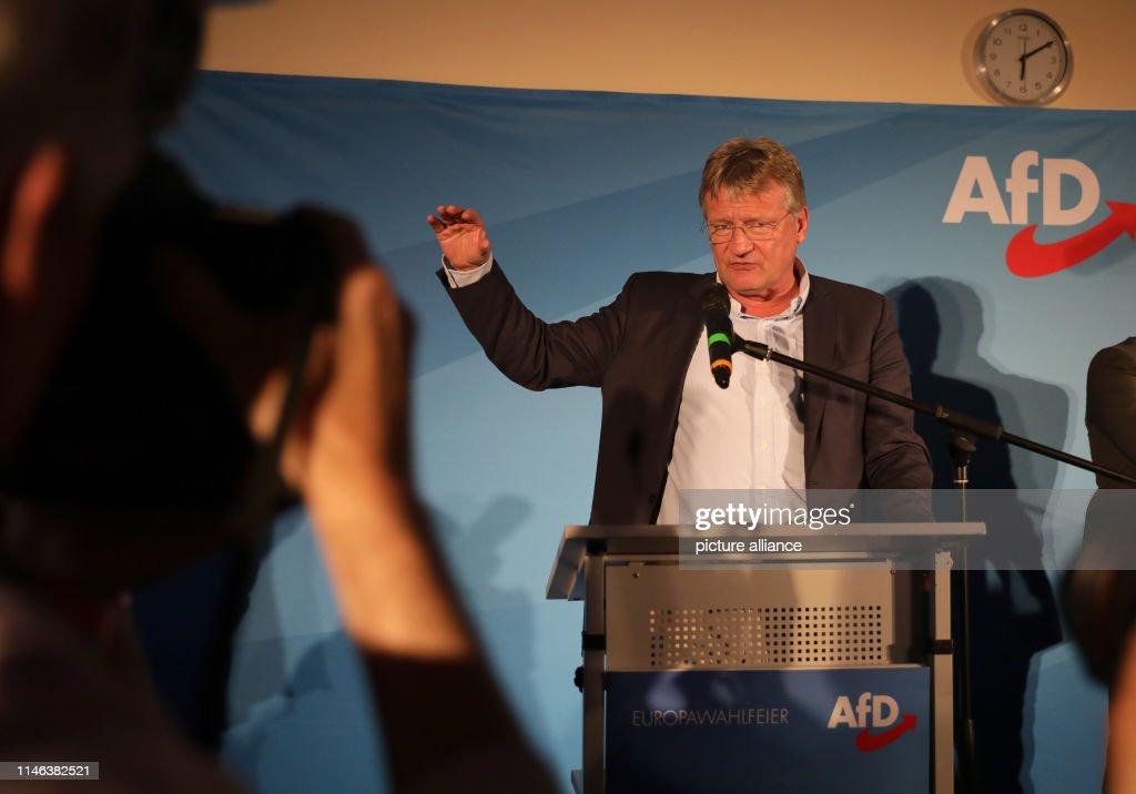 DEU: European Elections AfD