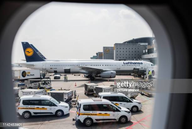 A Lufthansa aircraft is standing on the apron of Frankfurt Airport Photo Andreas Arnold/dpa