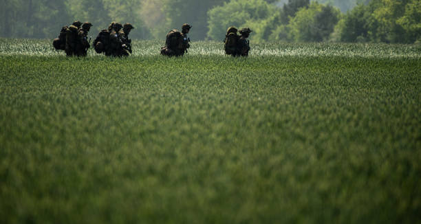 "DEU: Multinational Bundeswehr Exercise ""Green Griffin 2019"""