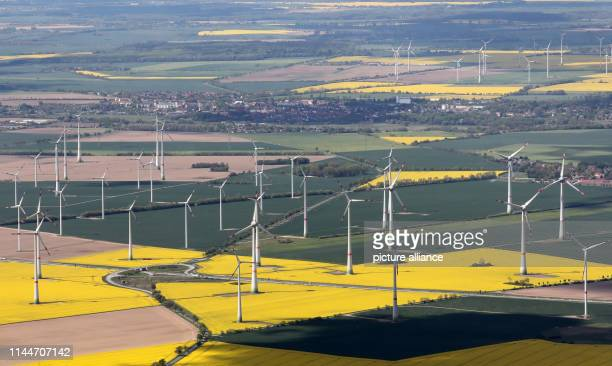 14 May 2019 MecklenburgWestern Pomerania Altentreptow There is a large wind farm to the right and left of the A20 motorway Photo Bernd...