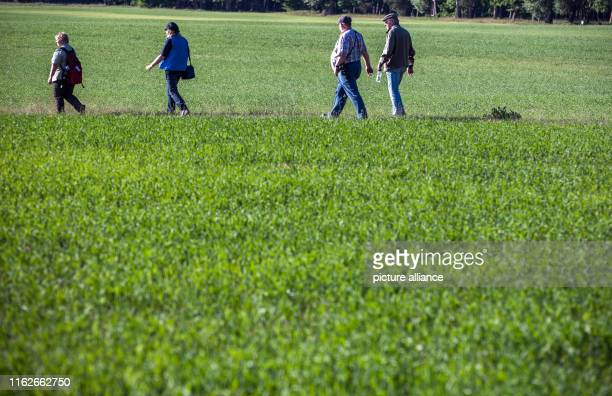 May 2019, Mecklenburg-Western Pomerania, Boek: Holidaymakers go over a field in the Müritz National Park. Founded in 1990, the Müritz National Park...