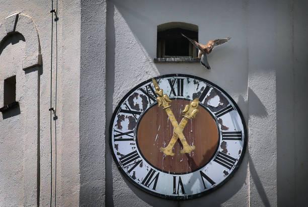 DEU: Kestrel And Church Clock