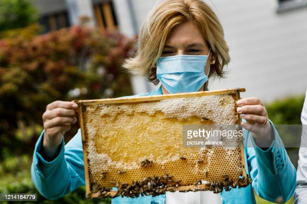 Julia Klöckner , Federal Minister of Food and Agriculture, looks at honeycombs on the occasion of the World Bee Day. She spoke about measures to...