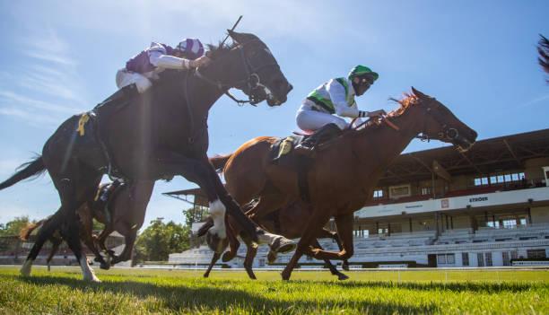 DEU: Gallop Races Without Spectators In Berlin Hoppegarten
