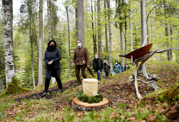 DEU: First Natural Cemetery Of The Bavarian State Forests