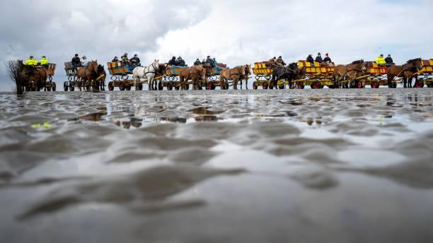 DEU: Demonstration In The Wadden Sea