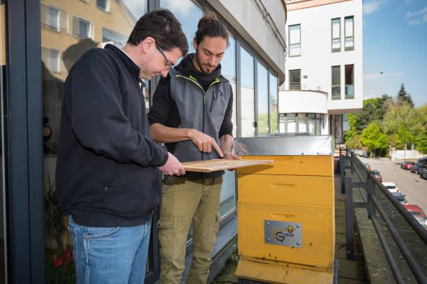 DEU: Bees For Hire