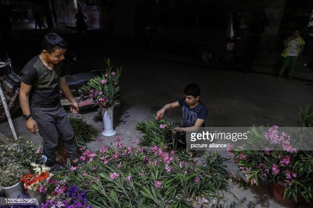 May 2021, Syria, Idlib: A child prepares flowers that people traditionally place on the graves of their deceased relatives or friends during Eid...