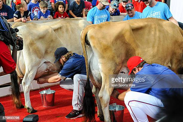 Boston Red Sox Starting pitcher Wade Miley left and Texas Rangers Pitcher Ross Ohlendorf in the cow milking contest prior to the Red Sox at Rangers...